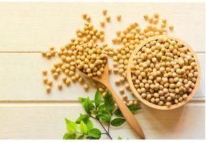 バストアップの食べ物・大豆イソフラボン